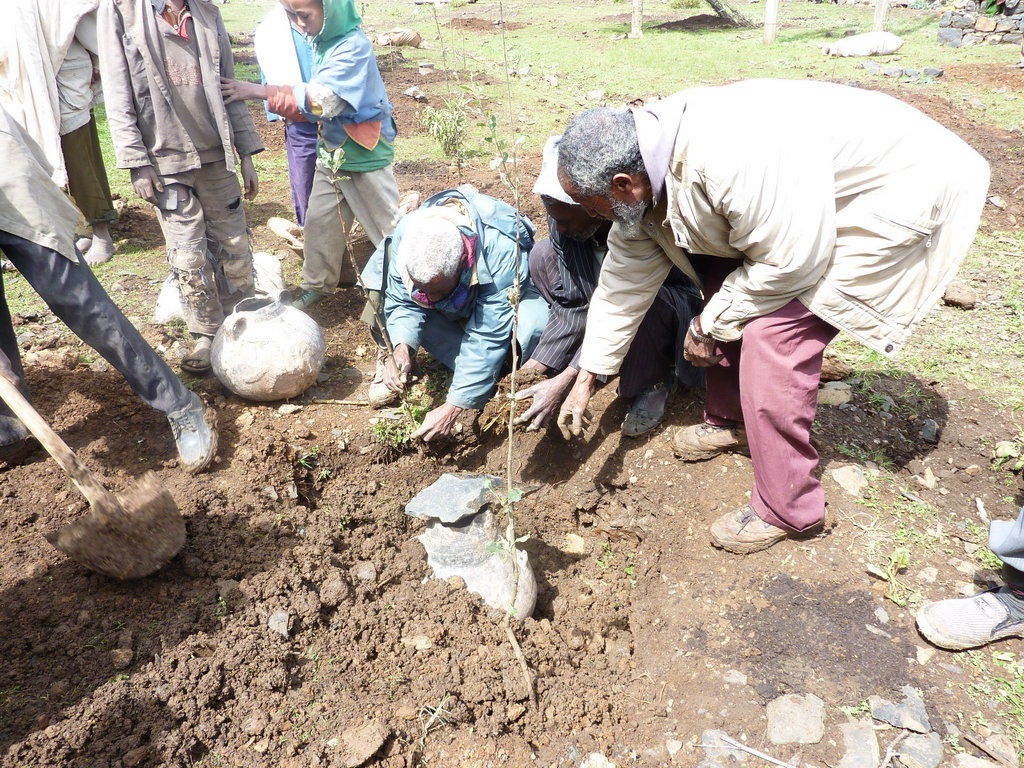 Build victory gardens for 200 Ethiopian students