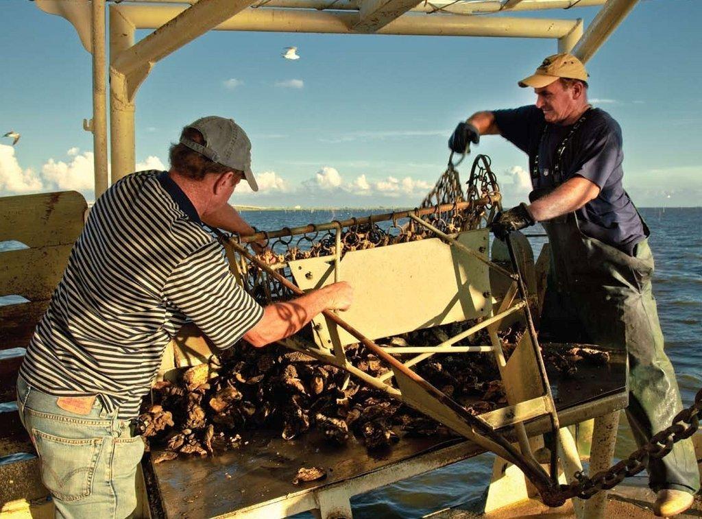 Gulf Coast Oil Spill Fund