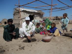 Tree plantation by village communities