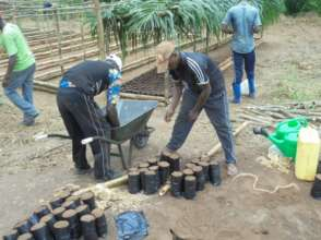 Filling pots with compost.