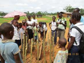 Planting trees to reforest school yard in Niania