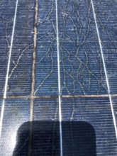 Close up showing deterioration in Phase 1 array