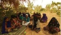 Tchirozerine women gardeners meeting