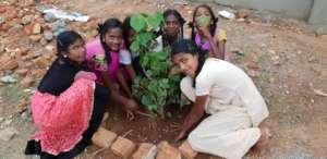 Children tree planting program