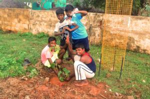children planting