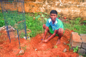 Children planting with CHHASE tree guard