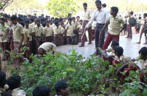 One of our tree distribution program