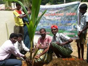 Our tree planting programme