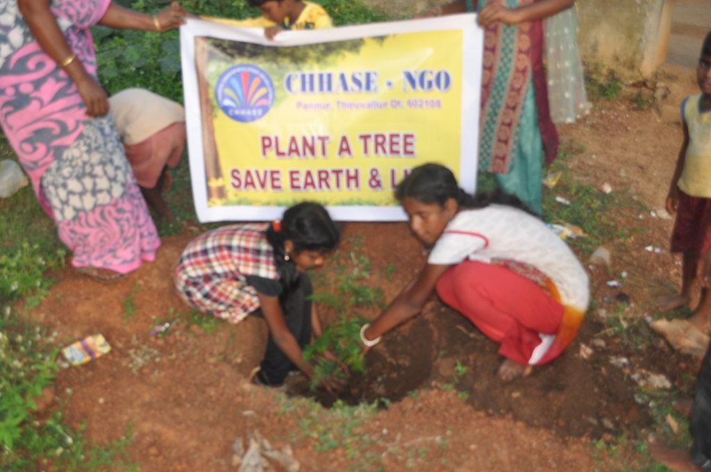 Plant a tree: save earth & lives