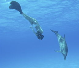 Hayden swimming with dolphin