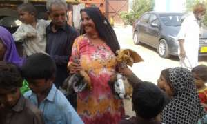 Poultry Distribution
