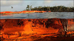 Oil on Booms and in Water