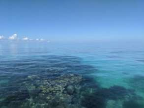 The reef at Isla Contoy
