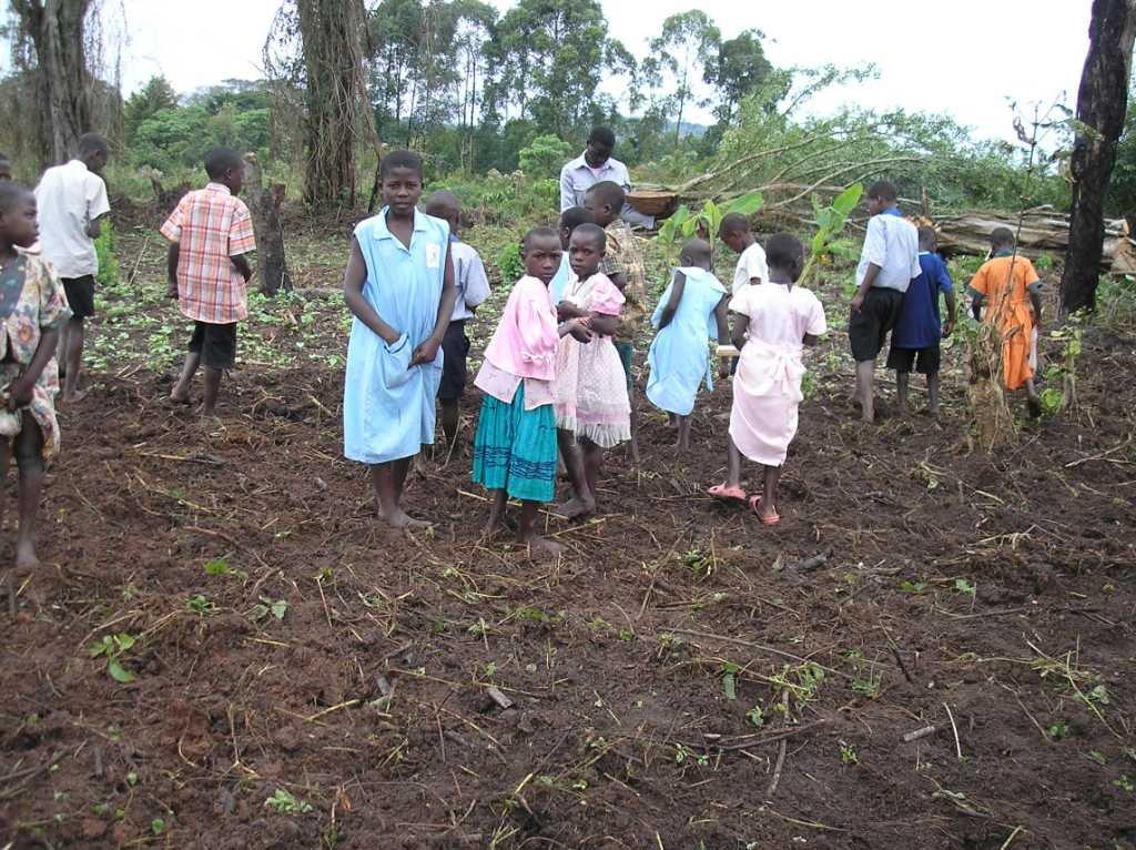 Improve livelihood for rural farmers in Uganda
