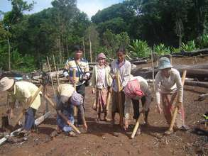 Rice cultivation method