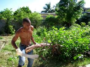 Working hard to clear and clean the land