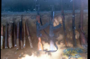 Confiscated guns and ivory
