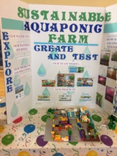 STEM Water Project