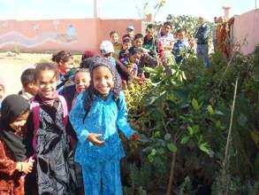 Kids plant trees in their school yard