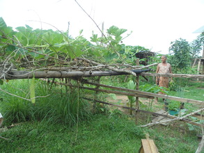 Ms. Yem Thon in her vegetable garden