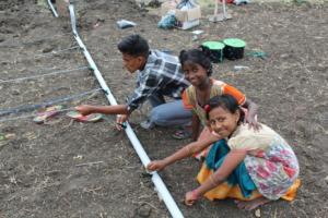 Installing the Drip Irrigation