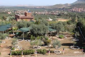 Dar Taliba school garden ready to welcome students