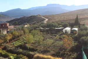 Dar Taliba garden from above
