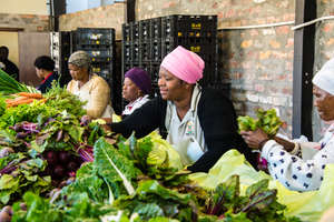 Harvest of Hope Pack shed in action