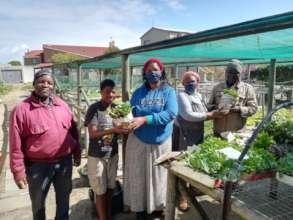 Home gardeners receive seedlings