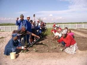 Setting up a community garden