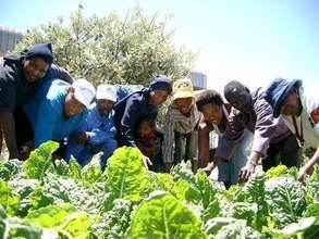 HIV-Aids treatment-support garden group in Nyanga