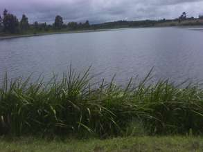 Water source at the dam in Koshyn