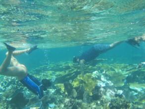 Maricarmen Garcia work on lion fish control