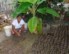 Mariela in the mangrove nursery