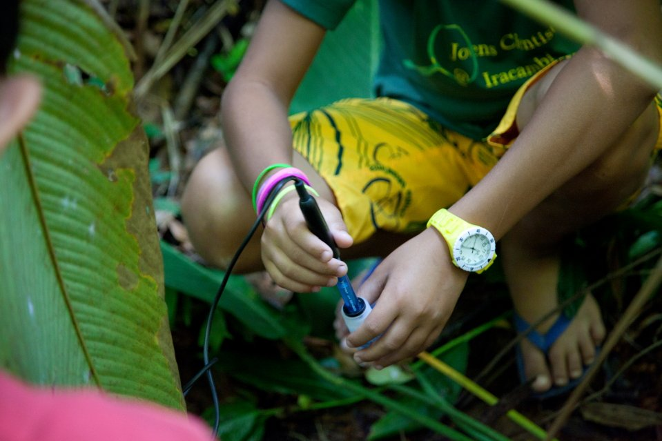 Junior Scientists Restoring Brazil's Rainforest