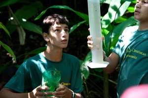 rainforest rain gauge