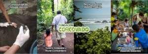 Corcovado Foundation
