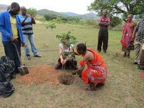 Tree planting at graduation