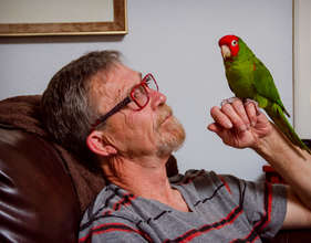 A rescued conure with his guardian
