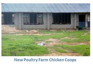 New Chicken Coups at the farm