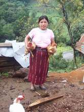 MUIXIL member proudly poses with her new chickens