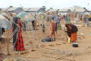 Women constructing shelters at a Baidoa IDP camp