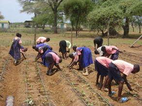 Primary School Students Planting Vegetable Garden