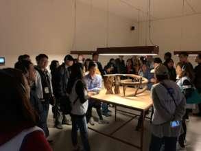 Outdoor Activity at Taipei Fine Arts Museum