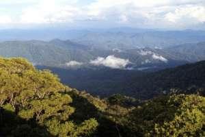 Gunung Palung National Park