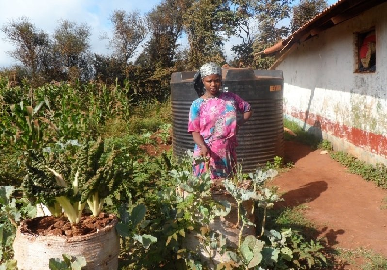 Build 1000 Resilient Communities in Horn of Africa