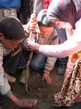 Rural Moroccan Children Planting a Tree
