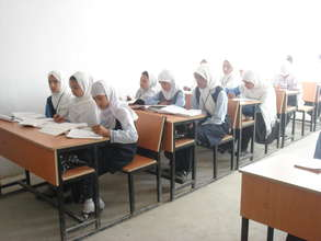 Adolescent girls studying at a school