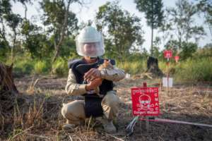 Landmine Detection : A HeroRAT and Handler
