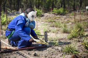 Abu helps clear Mozambique of landmines